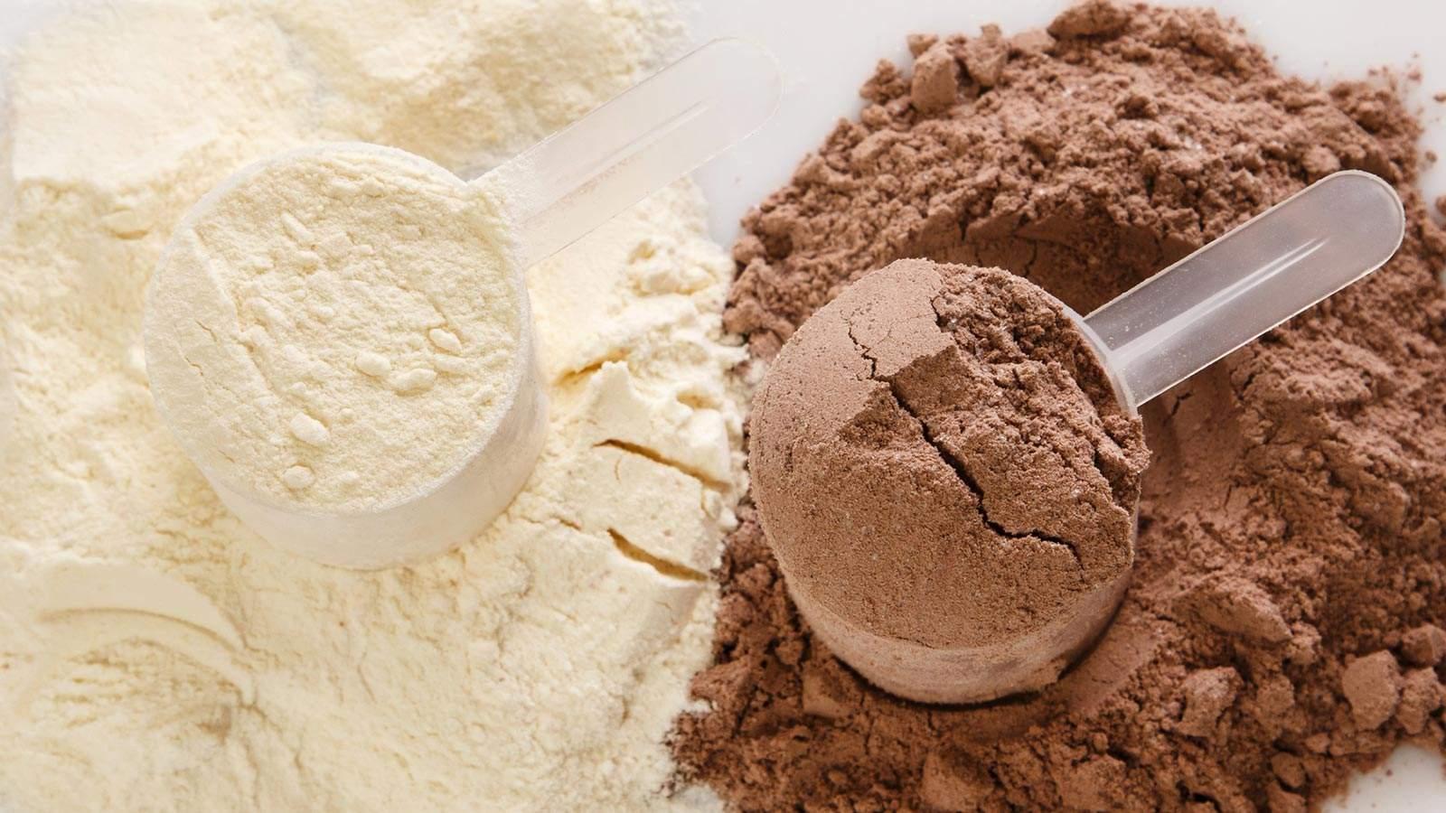 Guida all'uso delle proteine